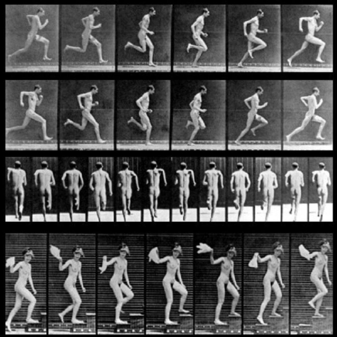 ecuencias fotográficas cinéticas de Muybridge